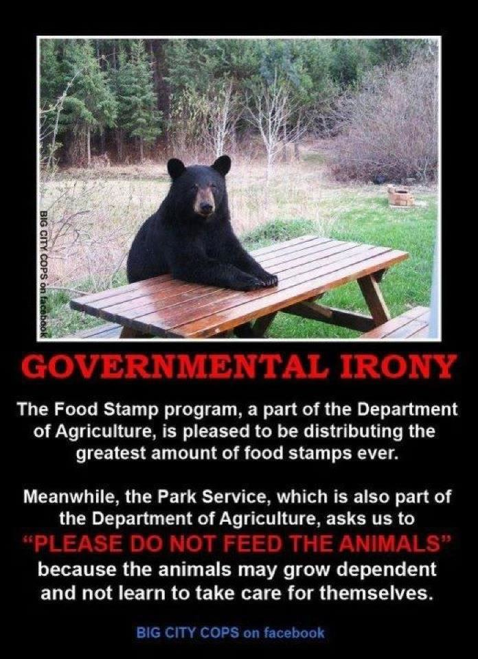 Welfare Bear